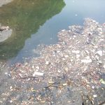 脱プラスチックで海洋汚染を減らす→奪われし未来 連載112