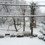 大雪と低温注意報とマイナス4度